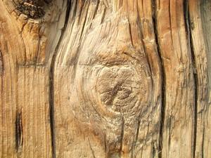 Wood_texture_vintage