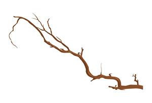 Wooden Branch