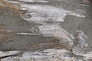 Wooden Texture 39