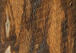 Wooden Texture 77