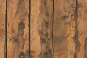 Wooden Texture 81