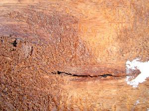 Wooden_board