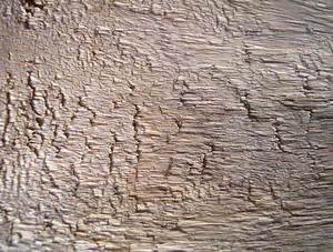 Wooden_close_up
