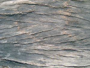 Wooden_close_up_texture_background