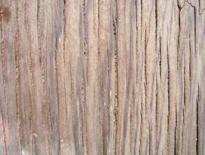 Wooden_old_background