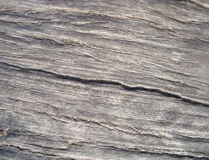 Wooden_texture_design