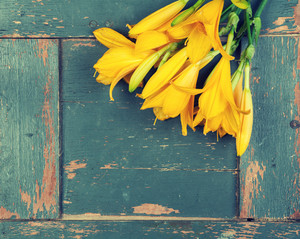 Yellow lily flowers on a wooden background