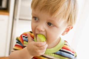 Young boy eating apple indoors