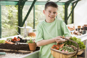 Young boy in greenhouse holding basket of vegetables smiling
