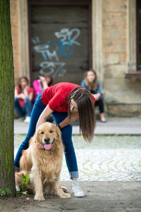Young happy girl petting a golden retriever
