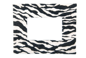 Zebra Pattern Photo-frame On White