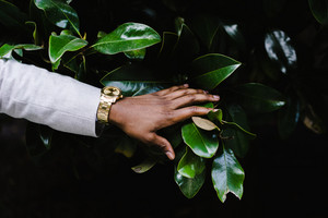 man touches leaves
