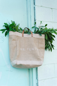 Tote with plant