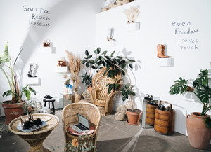 Woven chairs, tables and plants in room