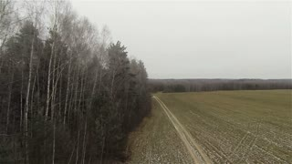Aerial forest field border, byroad in country side, russian autumn, first snow, peacefulness
