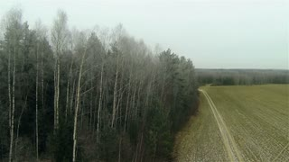 Aerial view of frozen forest field border and byroad  incountry side, russian autumn