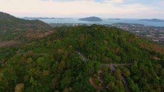 Aerial flight over road in wood