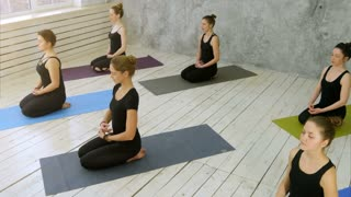 Beautiful young women working out doing yoga exercise