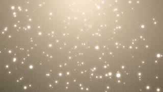 Elegant Background Wedding Loop Animation