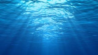 Underwater Scene Loop