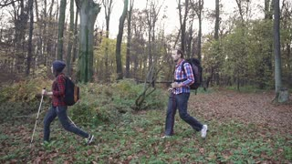 Young couple hiking in the autumn forest