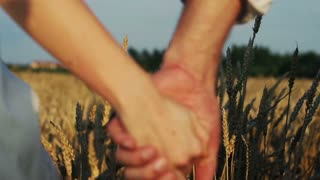 young couple walking in field super slow motion, 240Fps
