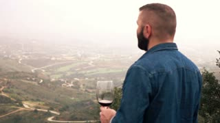Young handsome man drinking wine on terrace at home, 240fps