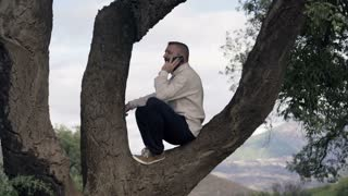 Young happy man talking on cellphone while sitting on the tree in the country
