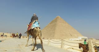 Back view of egyptian man on a camel at Giza pyramids complex
