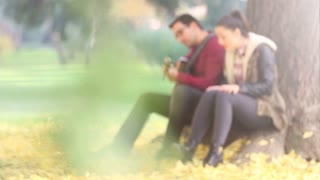 Beautiful brunette woman singing and man playing guitar while sitting on a tree in park, graded