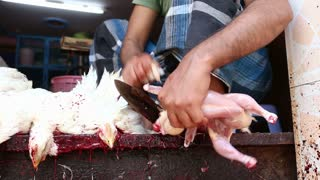 Boy cutting body of slaughtered chicken using knife between his toes.