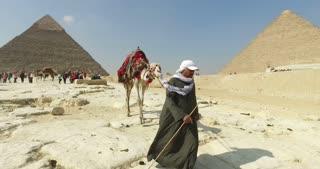CAIRO, EGYPT - FEBRUARY 04, 2016: Egyptian man leading camel at pyramids of Giza