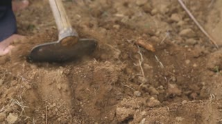 Close up view of a man digging and working on a land