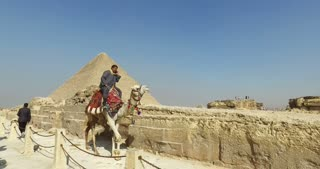 Egyptian man on a camel talking on phone at Giza pyramids complex