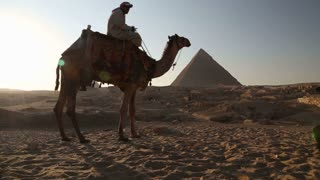 Egyptian man sitting on a camel at pyramids of Giza