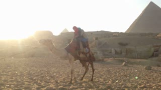 Female tourists riding a camel at Giza pyramids at sunset