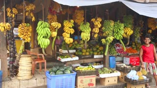 GALLE, SRI LANKA - MARCH 2014: Local fruit store with worker standing in front of hanging bananas and other exotic fruit. Tropical fruit is available all year round in the country.