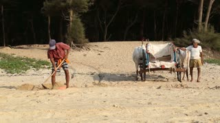 GOA, INDIA - 23 JANUARY 2015: Indian man collecting sand in a bowl and throwing it to a carriage.