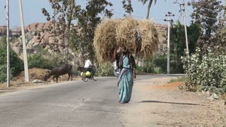 HAMPI, INDIA - 28 JANUARY 2015: Indian woman walks and carries hay on her head.