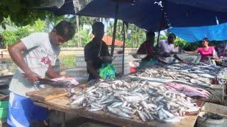 HIKKADUWA, SRI LANKA - FEBRUARY 2014: Man cutting and cleaning fish at Hikkaduwa market. Hikkaduwa Sunday market is known for its wide range of fresh produce.