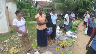HIKKADUWA, SRI LANKA - MARCH 2014: View of local women at the Sunday market selling fruits.