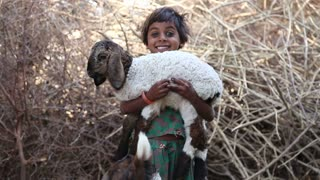 JODHPUR, INDIA - 13 FEBRUARY 2015: Portrait of beautiful Indian girl holding a lamb in her hands.