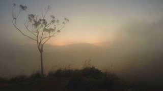 Magical sun rising with mist passing over mountain and tree silhouette at Ella Peak, Sri Lanka.
