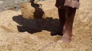 Man digging sand with a shovel at field in Jodhpur, low angle view.