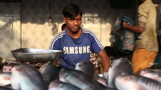 Man selling fish on ambulant stand on the streets of Mumbai, India.