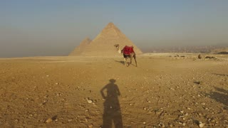 Man's shadow approaching to camel at Giza pyramids, Cairo, Egypt