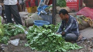 MUMBAI, INDIA - 12 JANUARY 2015: Man sorting vegetables at a street stand in Mumbai.