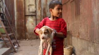 MUMBAI, INDIA - 12 JANUARY 2015: Portrait of Indian boy on a street in Mumbai holding a puppy.
