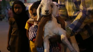 MUMBAI, INDIA - 15 JANUARY 2015: Portrait of children holding baby goat at street in Mumbai.
