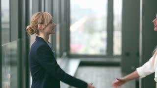 Profile of two attractive blonde businesswoman shaking hands, graded